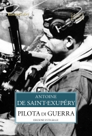 Copertina de PILOTA DI GUERRA